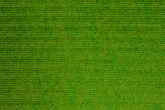 11830 Loretto Lime