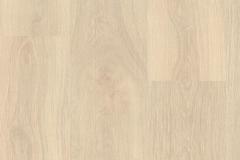 Seashore Oak