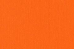 Orange 037