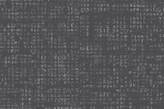 Encryption Blak White