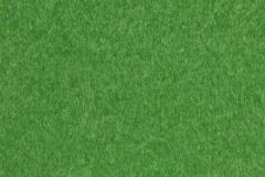 0603 Verde Cesped