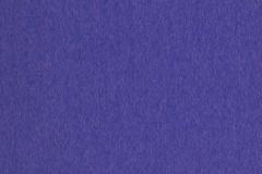 4013 Violeta