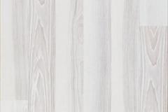 Polar Ash 2str