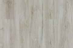 Corsica Oak