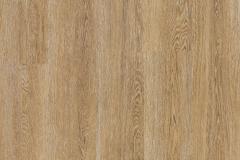 Puccini Oak