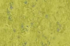 Absinthe 695