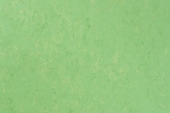 Apple Green 754