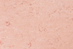 Pale Pink 678