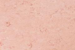 Pale Pink 678